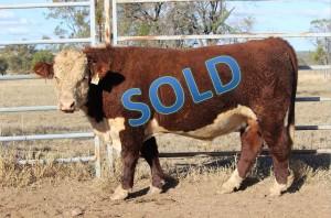 J107_Sold